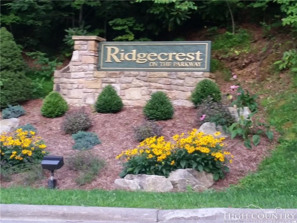 Parkcrest Drive,Boone,North Carolina 28607,Land,Parkcrest Drive,1008